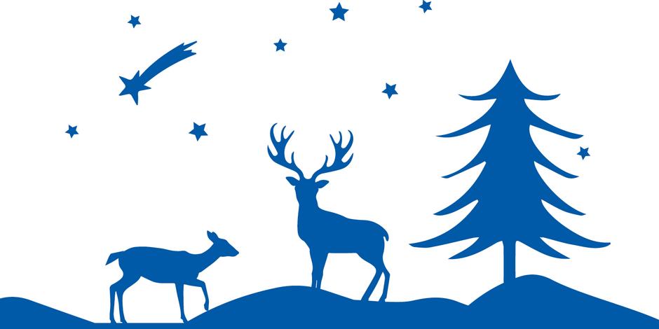 Frohe Weihnachten Und Ein Erfolgreiches Neues Jahr.Tricept Wünscht Frohe Weihnachten Und Ein Erfolgreiches Neues Jahr